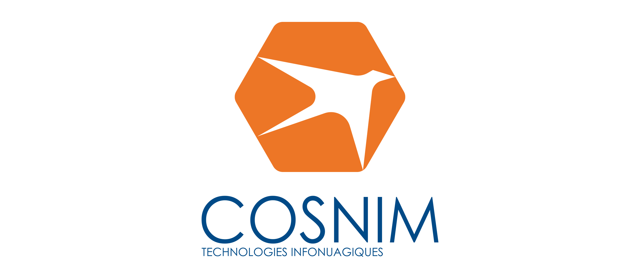 Logo final Cosnim